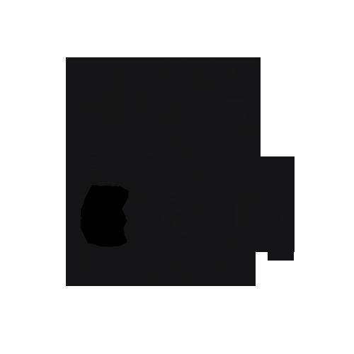Websidesign und Website-Erstellung mit transparenter Preisgarantie
